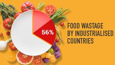 Food security is looming large over our heads. Will we be able to digest this?