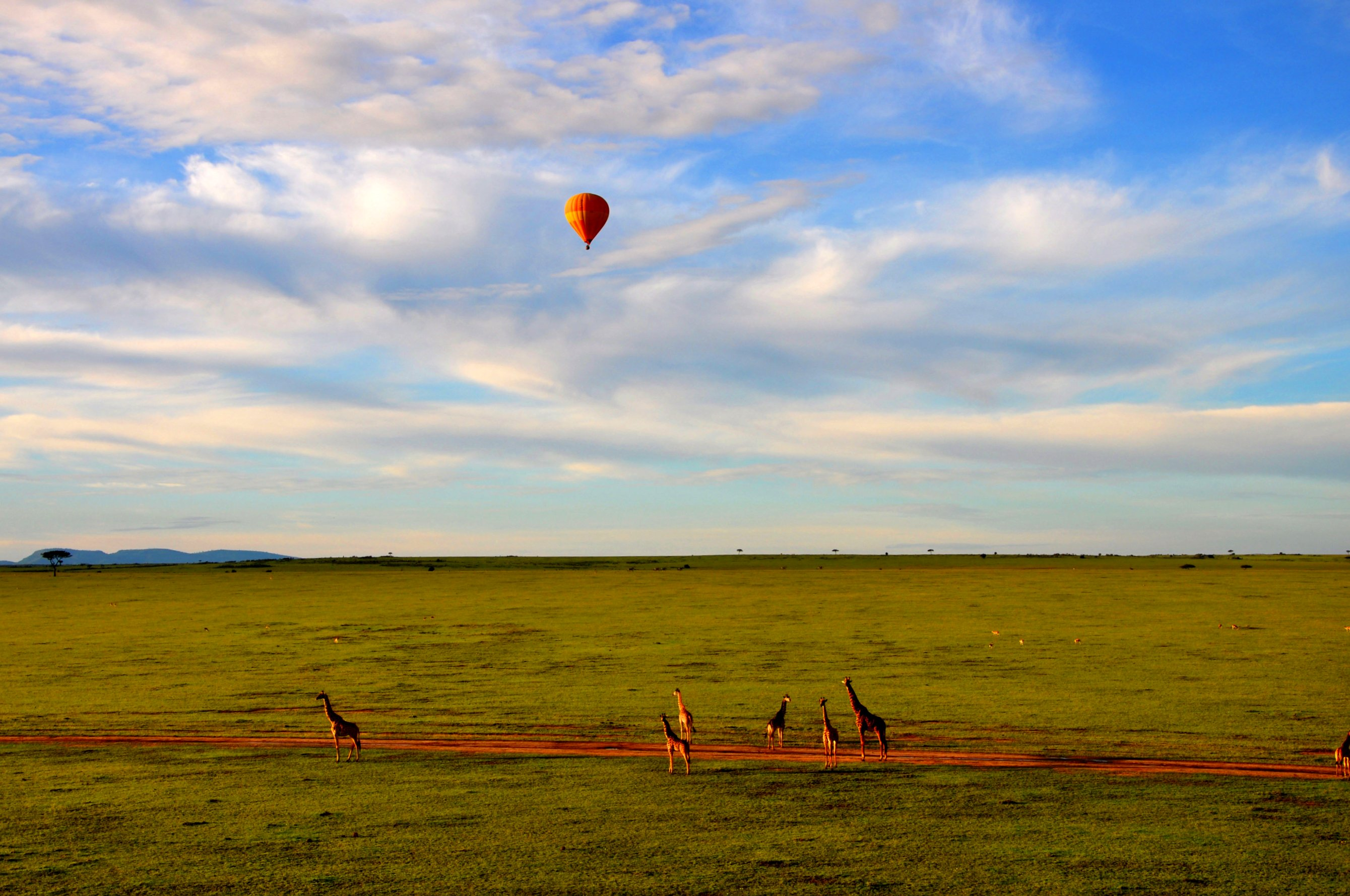 hot_air_balloon_safari_in_maasai_mara_042020060606.jpg