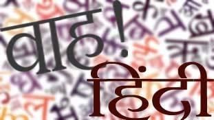 हिंदी अकादमियों से सम्मानित लोग नहीं हैं हिंदी सेवी !