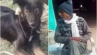 जायदाद बेटे के नाम नहीं कुत्ते के नाम कर MP के किसान ने बड़ा मैसेज दिया है!