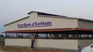 महाराष्ट्र के किसान ने 'बकरी बैंक' के जरिये बदल दी कई परिवारों की जिंदगी