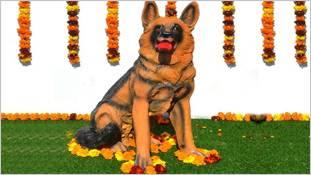 एडिशनल एसपी टिंकी ने 'कुत्ते की मौत मरना' कहावत के मायने ही बदल दिये