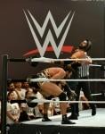 WWE India Tryout 2019 in Mumbai