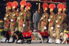 47th BSF Day Parade