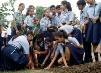 Mega Tree Plantation Drive