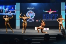 International Health  Sports and Fitness Festival