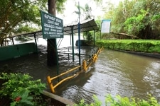 Srirangapatna  Ranganathittu bird sanctuary has been flooded due to which the boating has been cancelled following heavy release of water from Krishna Raja Sagara  KRS  reservoirs in Cauvery basin at Srirangapatna in Mandya district of  Karnataka on
