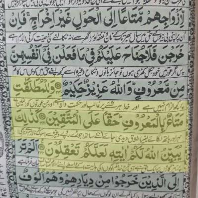 रंगीन लाइन में आयत 241 और 242 हैं, ये क़ुरान की फोटो है.
