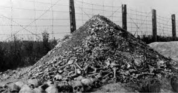 Nazi Camps
