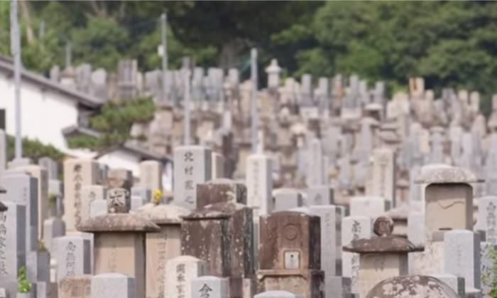 जहां क़ब्रें देखकर सोसाइटी का भ्रम होता हो, वहां ज़मीनें महंगी तो होंगी हीं