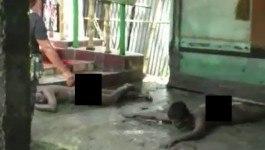 साइंस टीचर का परिवार नंगे होकर 'काला जादू' कर रहा था, पुलिस आई तो पत्थर-तलवार से हमला कर दिया