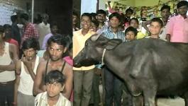 यूपी के उर्स में हिंदुओं ने खाकर 43 मुस्लिमों पर केस किया, कहा - भैंसे की बिरयानी खिला दी