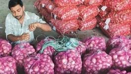 पाकिस्तान से प्याज़ खरीदने की तैयारी में भारत, किसान बोले- ये ठीक नहीं