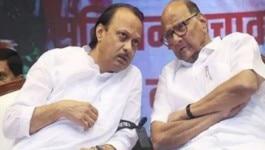 शरद पवार ने अजित पवार की बगावत का जिम्मेदार कांग्रेस को क्यों बता दिया?