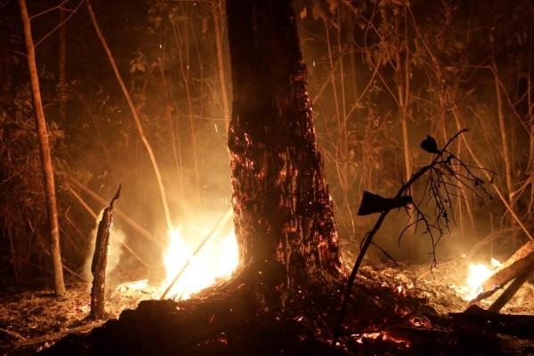 अमेज़न के जंगलों में लगी आग (तस्वीर:रॉयटर्स)