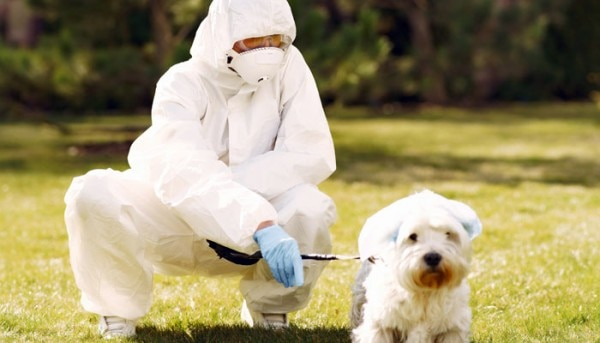 Person Wearing White Protective Suit Sitting On Green Grass 3985286 700