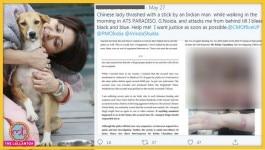 नोएडा में कुत्ते ने पालतू कुत्ते पर हमला किया, तो मालिक ने चीन की रहने वाली महिला को बेरहमी से मारा