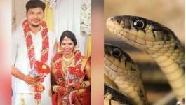 केरल: पत्नी की जान लेने के लिए अजीब वारदात को अंजाम दिया, यूट्यूब से मिला आइडिया!