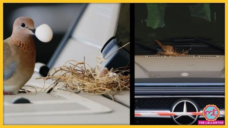 इस प्यारी-सी चीज के लिए दुबई के प्रिंस ने अपनी मर्सिडीज SUV छोड़ दी, अब तारीफ हो रही है