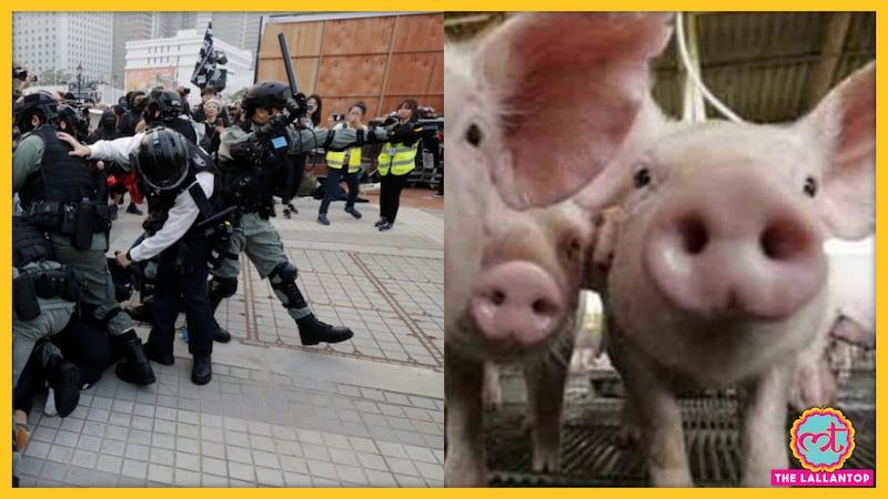 उइगर मुस्लिम ने बताया, 'चीन में हमें ज़बरदस्ती सूअर का मांस खिलाया जाता था'
