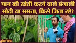 बंगाल चुनाव: नंदीग्राम में पान की खेती कर रहे किसानों की कमाई सुनकर चौंक जाएंगे