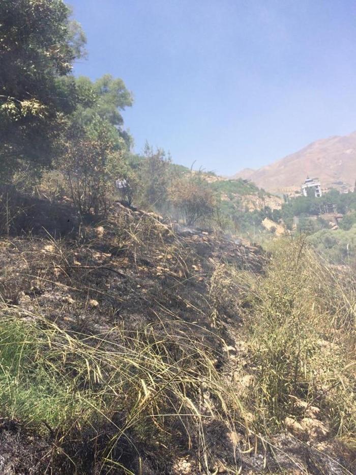 बोरना न्यूज़ के मुताबिक, हनज़ाक गांव के इसी हिस्से में आग लगी थी. (तस्वीर साभार- बोरना न्यूज़)