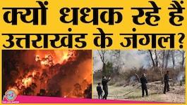 दो दिन से जल रहे उत्तराखंड के जंगल, अब तक 4 लोगों की मौत!