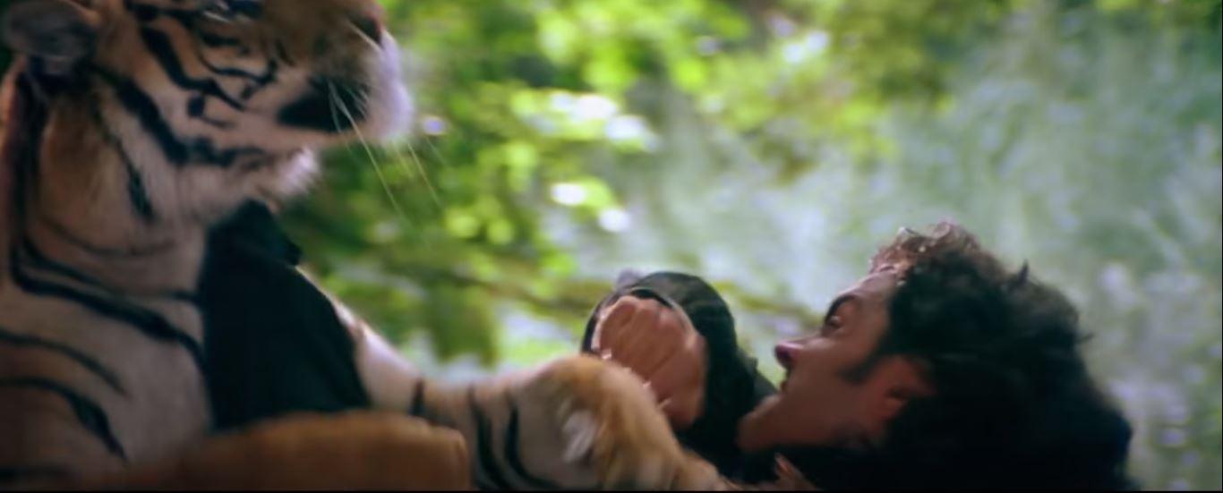 Bobby Fighting Tiger 1