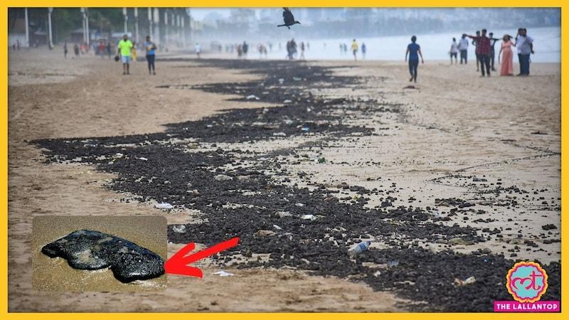 बदबूदार, लिजलिजे, चिपचिपे! गोवा के समुद्र तटों का सत्यानाश कर रहे ये टारबॉल्स बनते कैसे हैं?