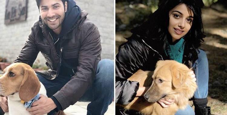 October Trailer: Varun Dhawan and newcomer Banita Sandhu looks quite promising
