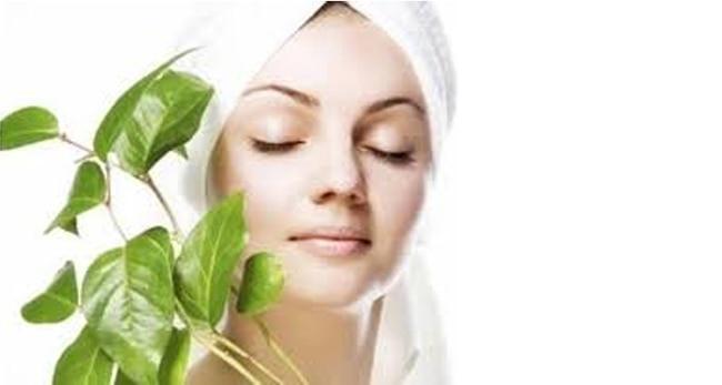 Ayurvedic botanicals for glowing skin