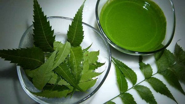 5 ways to use neem to cure dandruff!