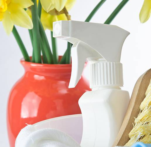 13 Things You Should Know About Spring Cleaning