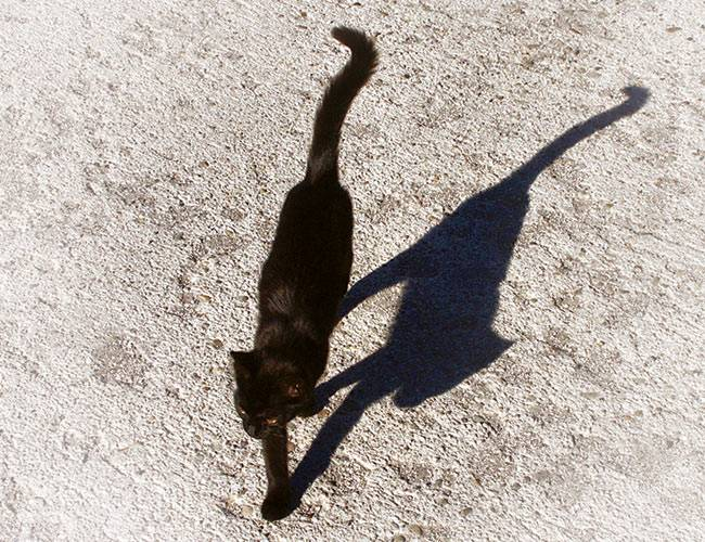article on superstitions and blind beliefs