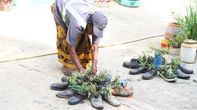 #GoodNews| A Panchayat Near Chennai Transforms Its Compost Yard Into A Beautiful Garden