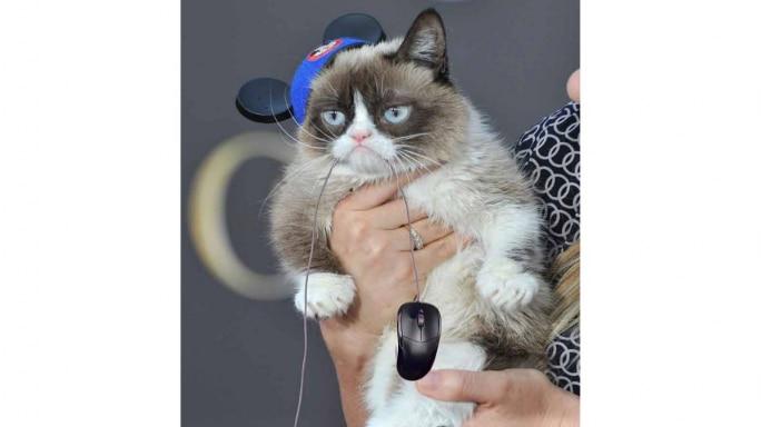 Grumpy Cat, the internet's beloved feline, catches a mouse. (Photo courtesy Elizabeth Renstrom)