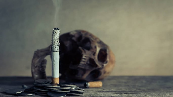 The Story Of Tobacco: 7 Interesting Facts About This Addictive Substance On No-Tobacco Day