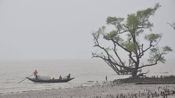 A Storm In The Sundarbans