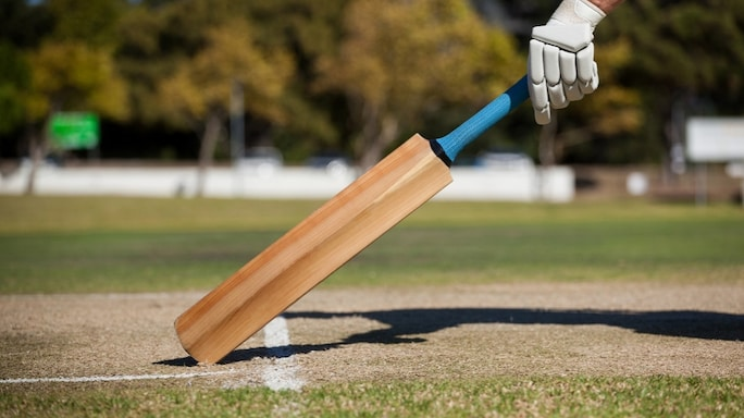 5 Things You Should Know Before Buying A Cricket Bat