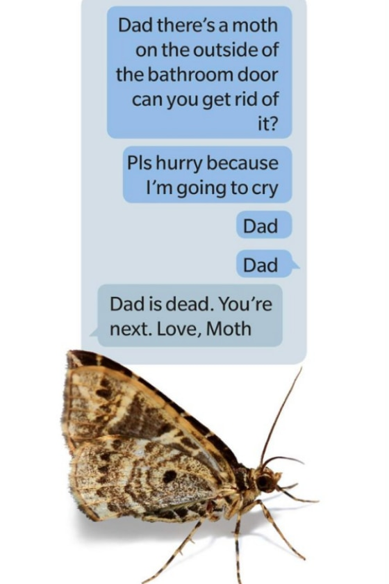 moth-text_102219013916.png